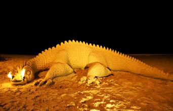 Long dragon on the beach at night.