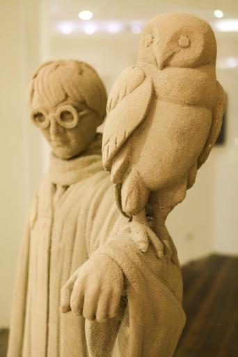 Harry potter in sand with owl.